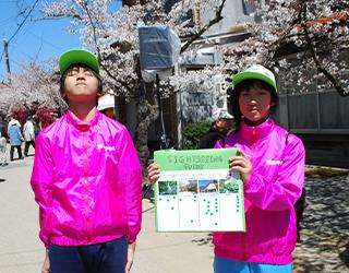 春のがいせん桜祭り 観光案内練習